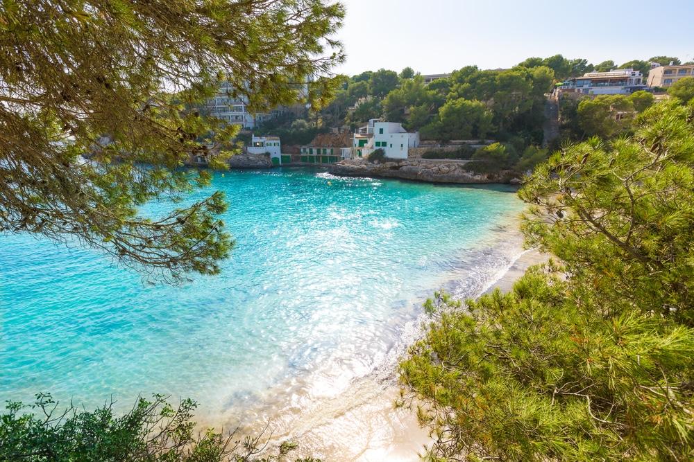 Cala Santanyí, pinares, arena blanca y aguas turquesa, Mallorca
