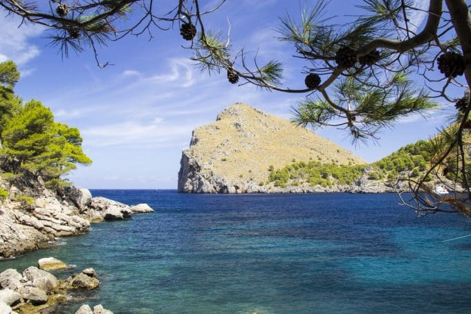 Vistas del norte de Mallorca acantilado, mar turquesa y pinares