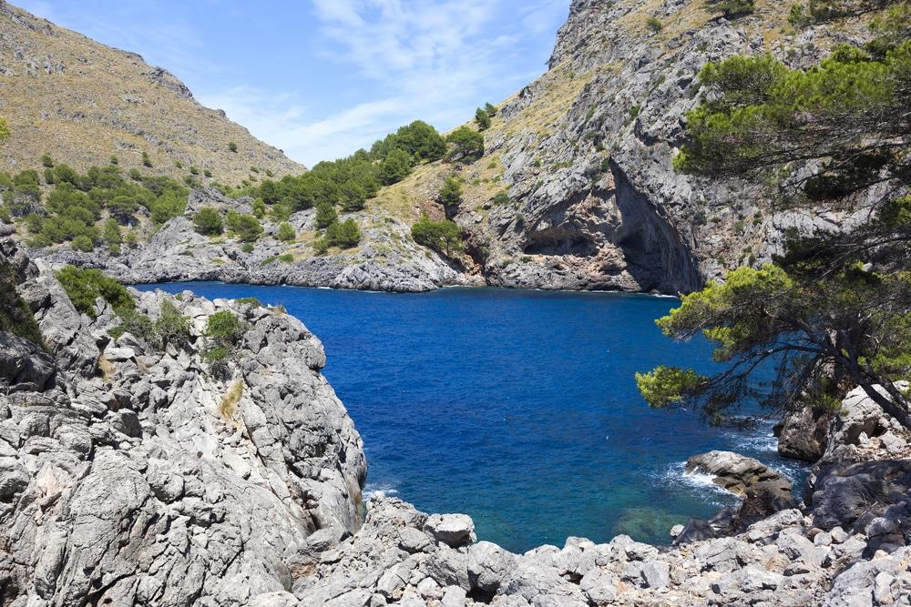 Sa Calobra, acantilados y vegetación con el mar de fondo, Mallorca